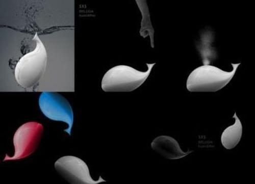 鲸鱼皮肤结构图