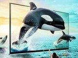 受不鸟的震撼有木有 看3D电视和投影对决