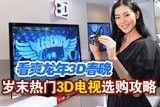 看爽3D春晚 岁末热门3D电视选购攻略