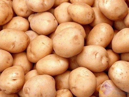 克山土豆全面 土豆的多种吃法营养全面