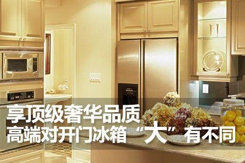 """享顶级奢华品质 高端对开门冰箱""""大""""有不同"""