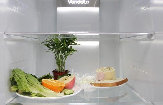 """保湿大对决!美的凡帝罗冰箱新鲜""""看得见"""""""