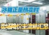 冰箱正是热卖时 卖场降价主流机汇总