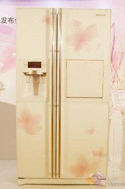 新生双循环 三星新款对开门冰箱登场