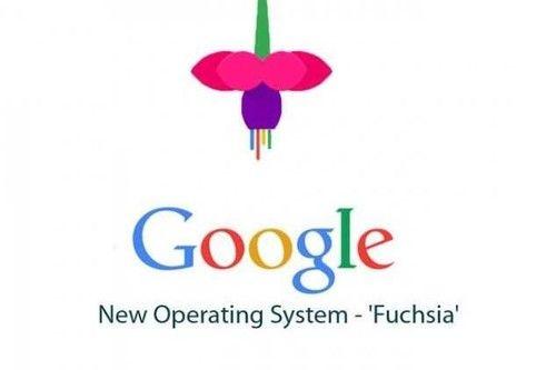 既然有Android 谷歌为何还要开发新操作系统