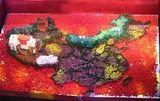 樱花欧式烟灶 用它吃遍红烧肉版中国地图