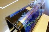 抢夺OLED印刷技术先机!京东方投10亿建平台