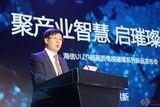 海信发布璀璨电视,九球天后潘晓婷成为首席体验官