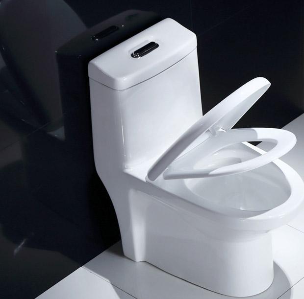 揪出隐形杀手 卫生间里的臭味才最危险