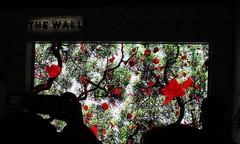 CES最具人气的展区,三星电视墙The Wall到底有多牛?