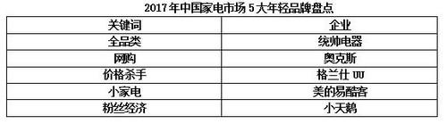 2017年中国家电市场5大年轻品牌盘点