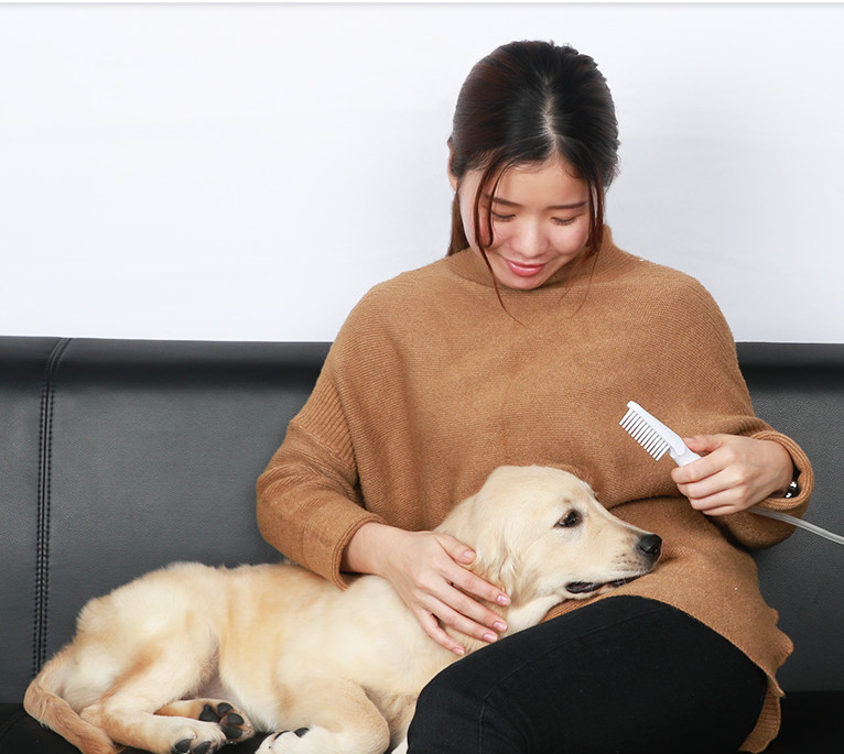 创意产品!宠物除菌清洁梳毛器,给予宠物最大的关怀