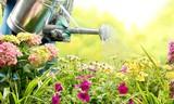 离家太久害怕花草缺水?智能水龙头来帮你灌溉