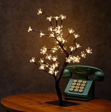 创意生活!没有三圣母的宝莲灯,有了它们也不赖
