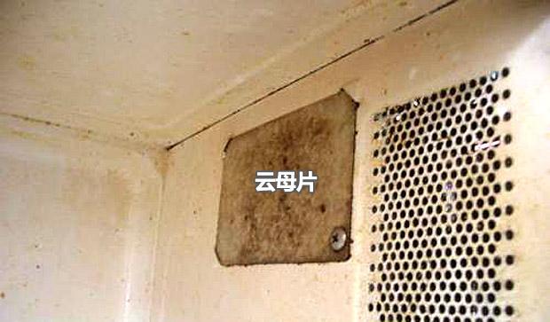 可别小瞧它,微波炉中的云母片你知道么?