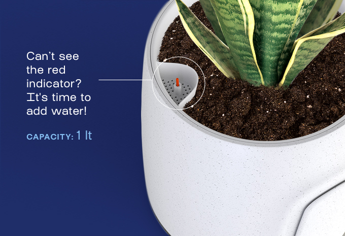 创意酷品:你想象不到的空气净化器,竟然只是个花盆