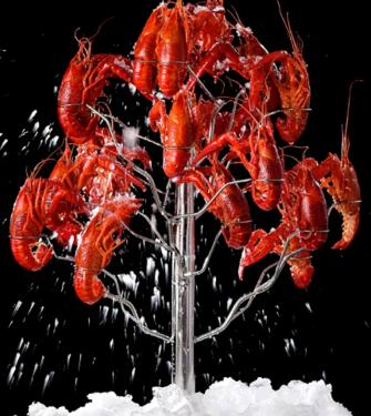 小龙虾放冰箱还是敌不过变质?!