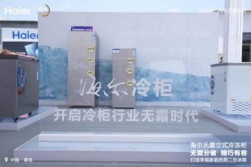 """无霜立式精分储 海尔冷柜打造幸福家庭第二台""""冰箱"""""""
