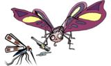 这些生活用品也能驱蚊?!是的!没搞笑!