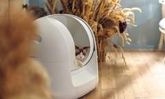 高科技猫厕所:让猫奴从此告别铲屎生活