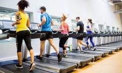 在家里也能坚持健身锻炼,跑步机什么牌子好