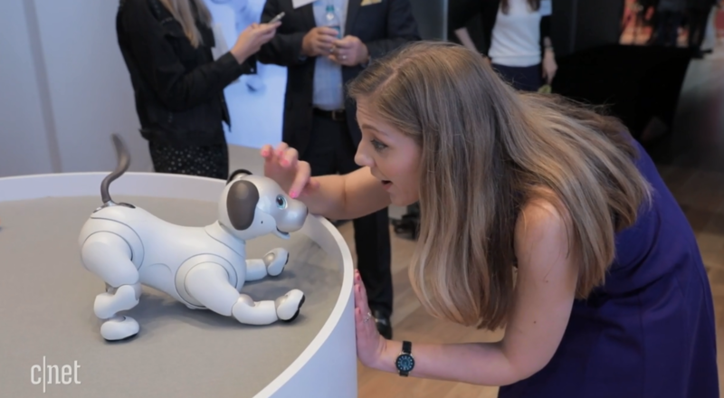 2019 CES大会,我们将会见到哪些黑科技机器人?