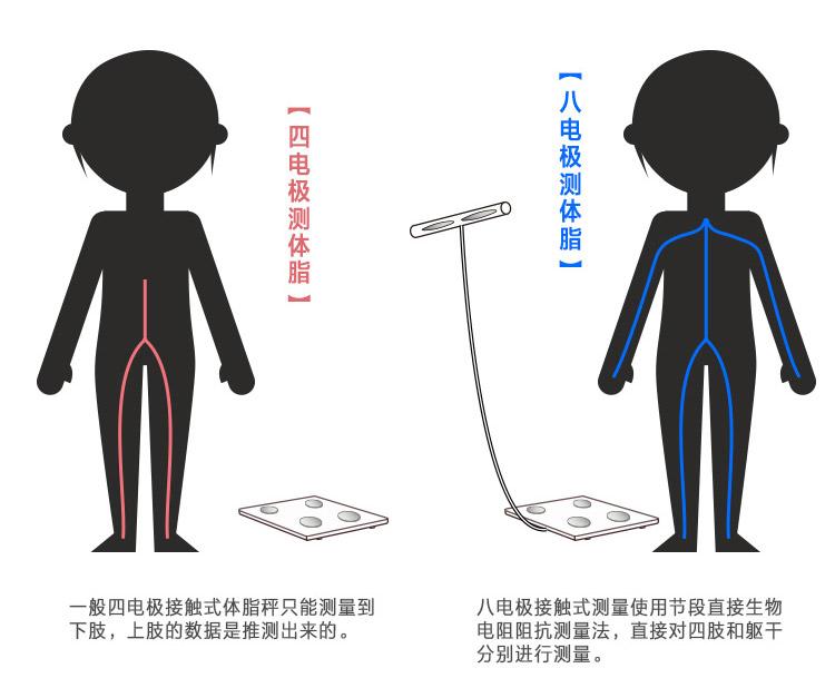到底胖不胖,问问体脂秤就明白了,八电极更懂你!