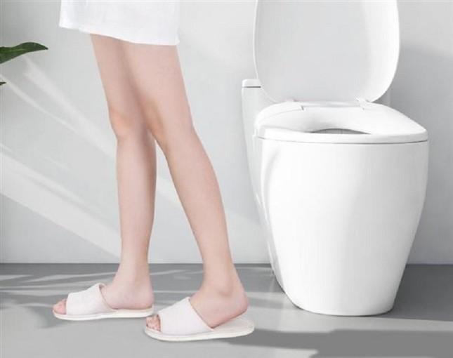 如厕坐便器品质推荐,智能马桶什么牌子好