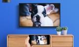 专业Mstar芯片 据说乐融32英寸电视新品把其它品牌震住了?