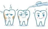 口腔清洁小卫士,备受牙医专业推荐的XNUO心诺冲