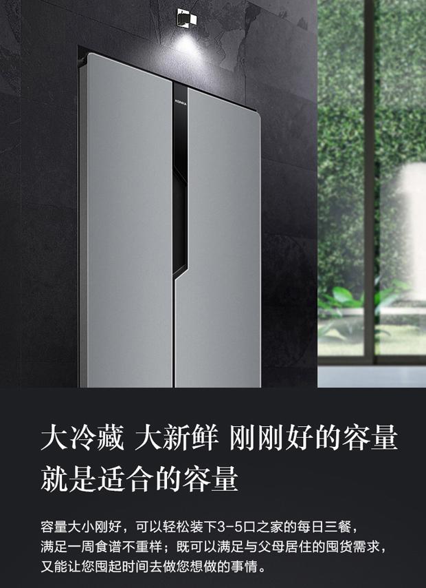 """""""大肚""""能容更嵌薄时尚,对开门冰箱就选它!"""