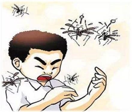 环保捕蚊黑科技,灭蚊灯真的有用吗?