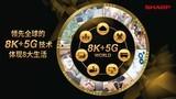 夏普会长戴正吴:领先全球的8K+5G技术体现八大生活
