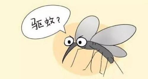 环保高效的灭蚊方式值得一试,灭蚊灯哪个牌子好