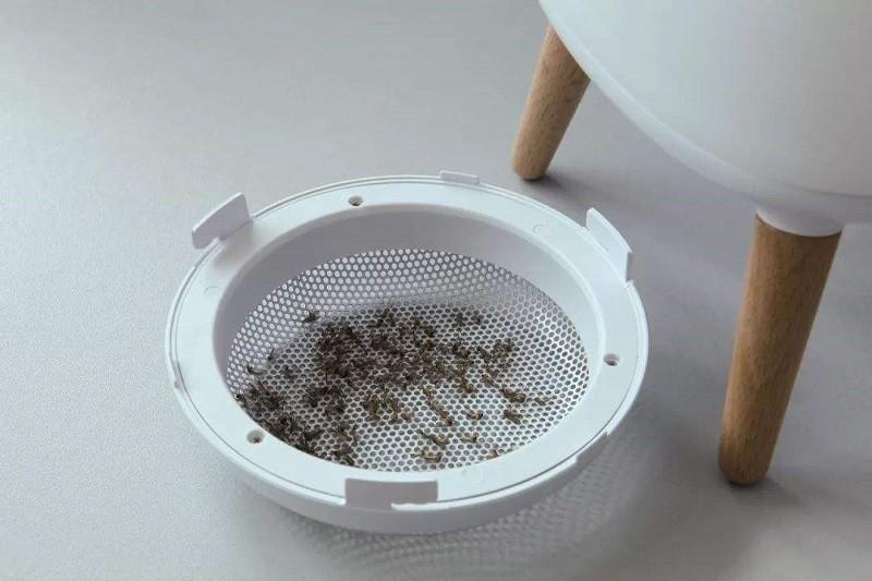 室内驱蚊方法,灭蚊灯有效果吗