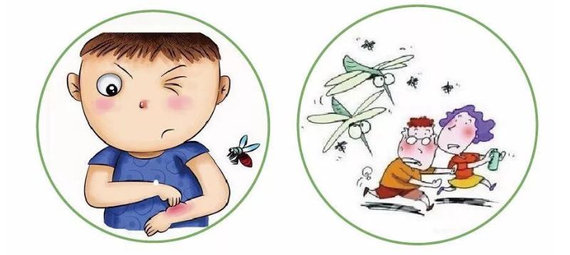 蚊子竟然成杀手!灭蚊灯真的有用吗?