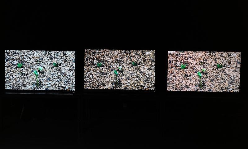 曝:海信将推叠屏电视 叠屏显示或成高端电视标配