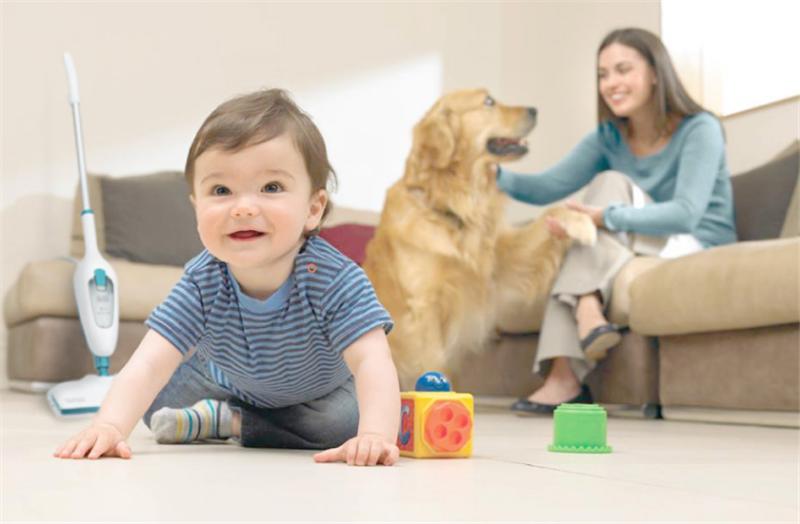 让宝宝快乐玩耍,守护家人健康,蒸汽拖把什么牌子好?
