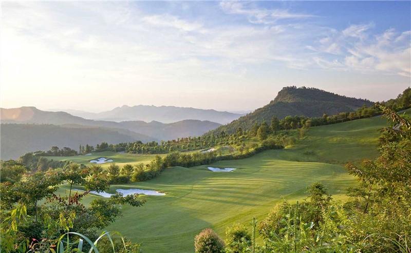 日本TYY独领风头,高尔夫品牌2019年再次对决
