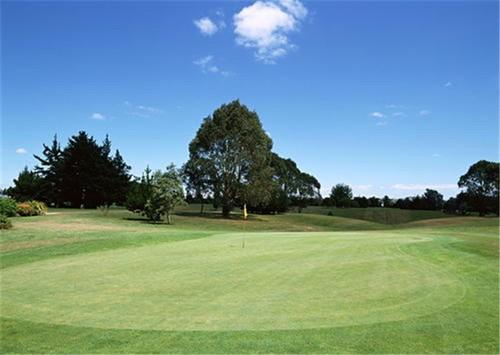 高尔夫球杆哪个牌子好?日本TYY坚持专业设计只为更好的你