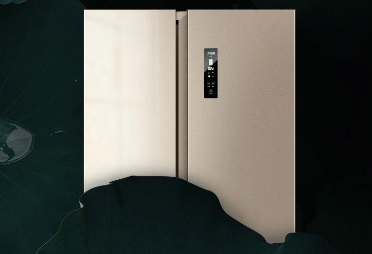 双十一选购攻略—手把手教你挑一款好冰箱