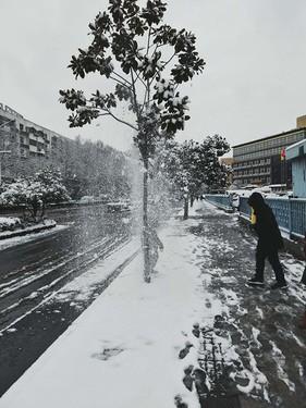 大雪节气,面对降温,你做好准备了么?