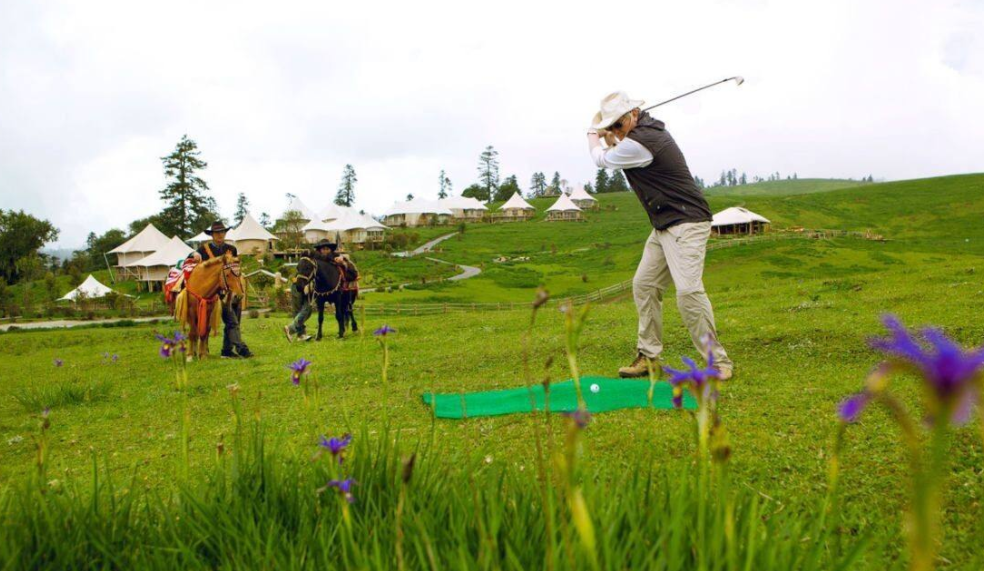 高尔夫运动品牌排行榜,好球杆至关重要