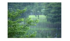 从清明到梅雨,南方人民的除湿保命秘籍看这里!