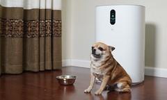 松下新品空气净化器除异味、除过敏原实测:全面高效,去除率超95%