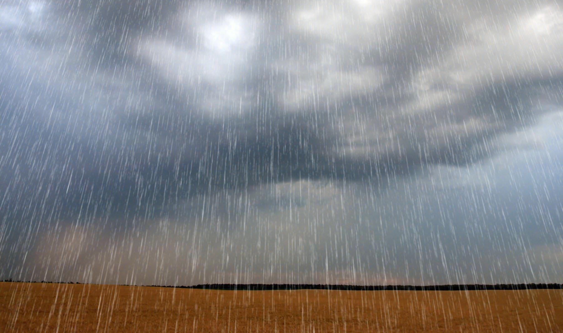 淅淅沥沥的梅雨季节,干衣机、除湿机销量激增