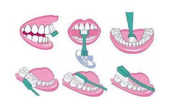 我国成年人90%以上有牙周病,刷牙姿势你做对了吗?
