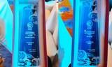 万家乐获评中国燃气热水器零售TOP3品牌