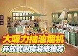 大吸力抽油烟机 开放式厨房装修推荐