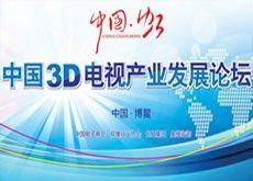 中国3D电视产业发展论坛